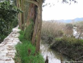 Jarillón en el Humedal La Conejera