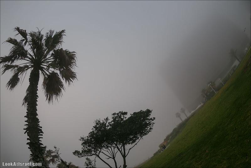 Тель Авив туманный - תל ערפל