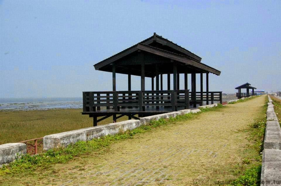 台中海線景點,薦高美濕地-6