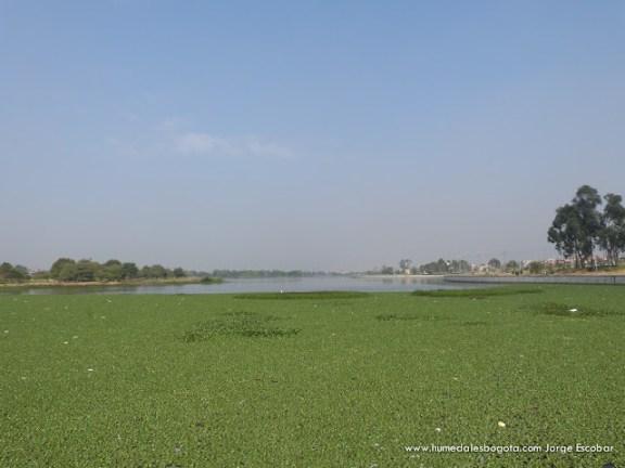 Humedal Tibabuyes