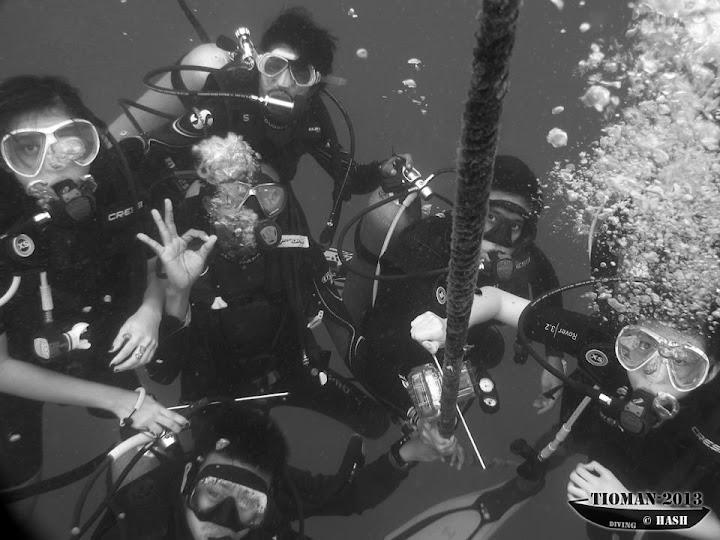 safety stop tioman dive trip