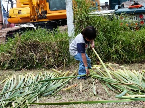 Niños ayudando en el tejido de la enea