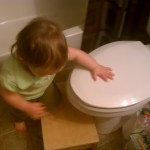 I made a home made potty seat for the toilet