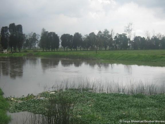 Río Bogotá en el Humedal Meandro del Say