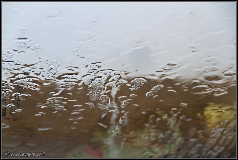 To rain or not to rain