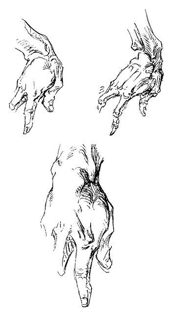 Clenched Fist Drawing Side View