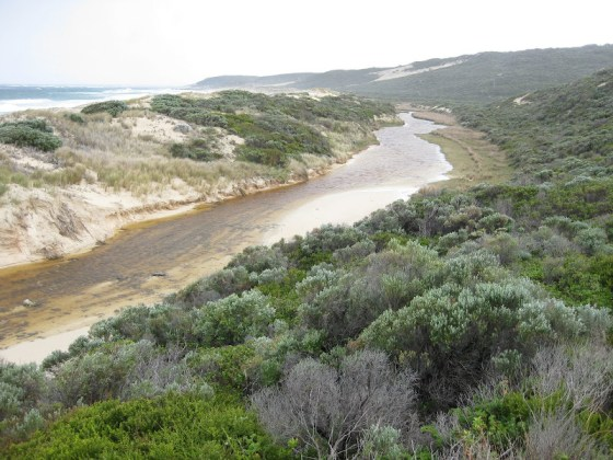 Boodjidup Brook, Cape to Cape Track