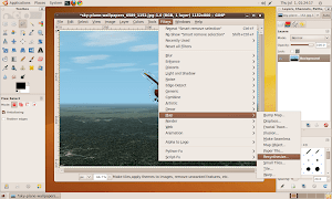 How to install and how to use GIMP Resynthesizer Plug-In in Ubuntu