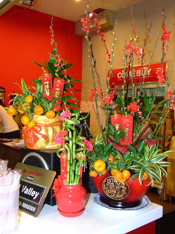 My Sunny Happy Garden  Ideas for Chinese New Year Decorations Probably Rhonda and all the other writers on Law of Attraction gained this  wisdom from this Chinese New Year practice  Ha ha ha   who knows