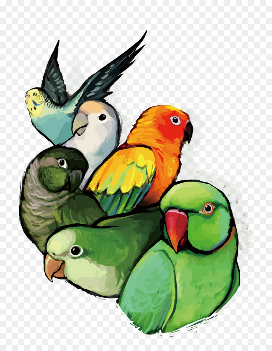 Logo burung is one of the clipart about running logos clip art,hockey logos clip art,christmas logos clip art. Logo Burung Lovebird Kartun - Blog Tentang Burung