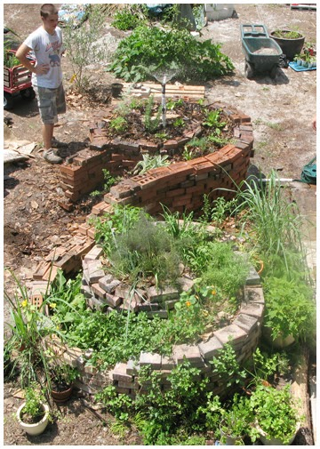 Golem Housing Co-operative: Urban Permaculture and Garden ... on Backyard Permaculture Design id=79642