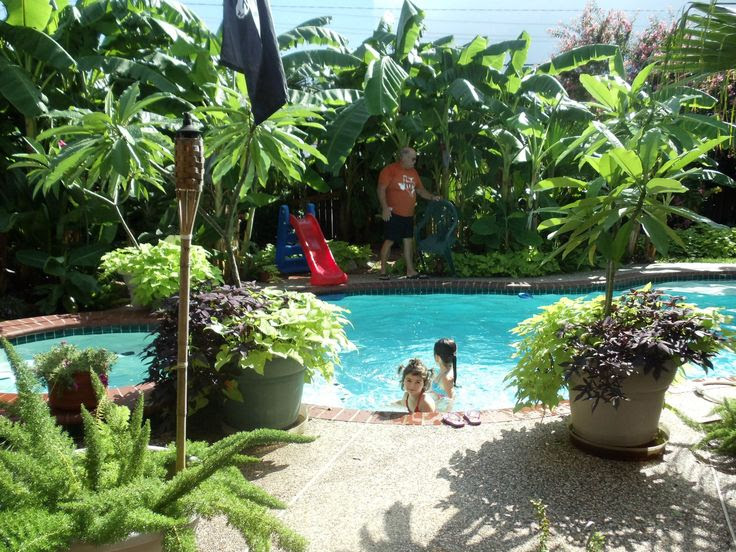 Backyard Tropical Landscaping Ideas Nz | Eanavevai - Home ... on Tropical Backyards  id=37738
