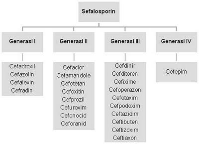 Uji kualitatif dan kuantitatif vitamin c. Antibiotik golongan Sefalosporin ~ FARMASI OBAT HERBAL