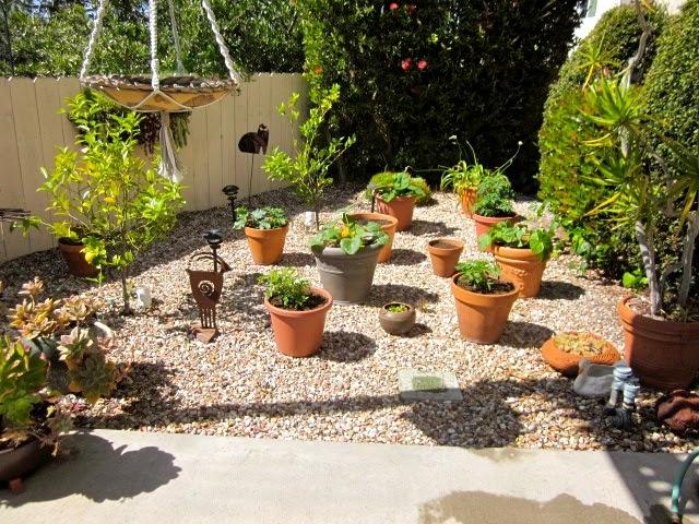 Building ideas: Backyard landscaping ideas no grass on No Mow Backyard Ideas  id=17122