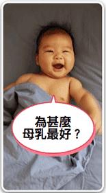 母乳如何產生製造 了解乳房構造及如何用手擠乳圖 - 哺乳媽媽加油站