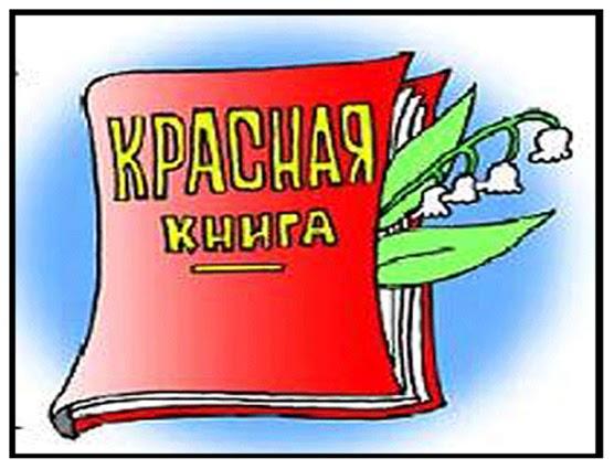 неразумное клоканье: красная книга тульской области доклад ...