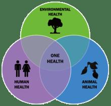 One health (una sola salut) i la compra directa al pagès