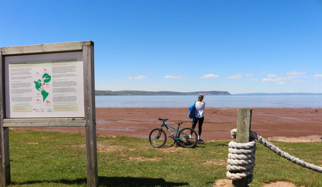 cycliste sur la plage Evangeline