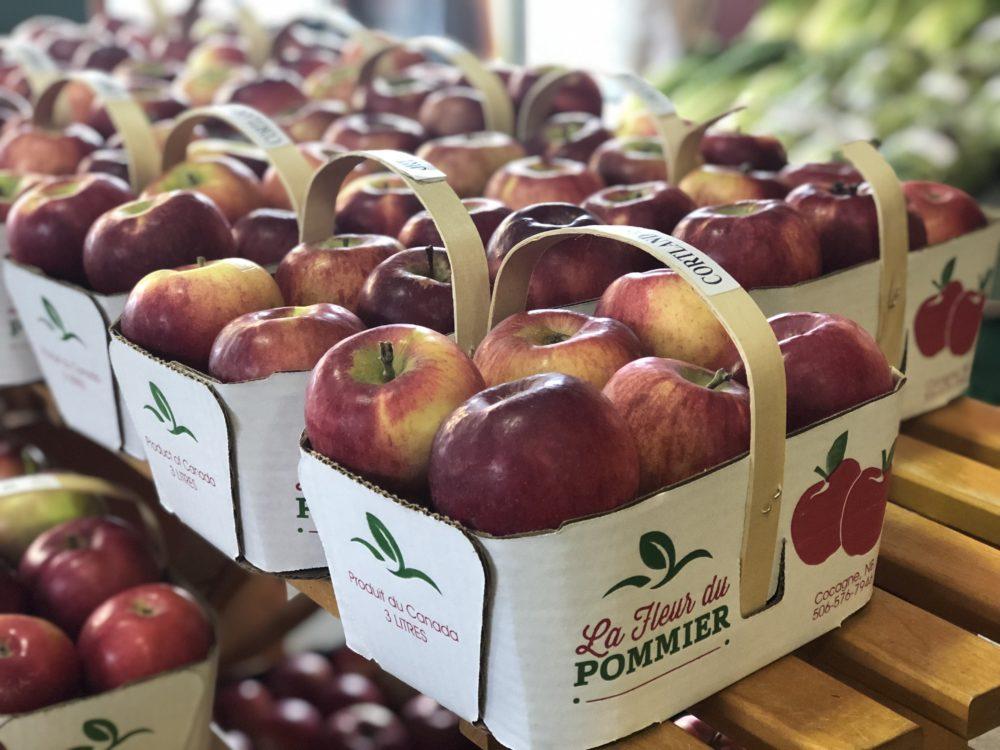 paniers de pommes vergers Belliveau