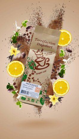 Mexique bio fair for life 250g grains – Les cafés Dagobert
