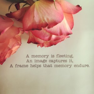 """An up close image of two soft pink roses placed above the words, """"A memory is fleeting, an image captures it, a frame helps that memory endure."""""""