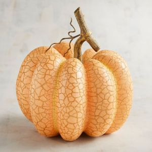 small-apricot-crackle-pumpkin