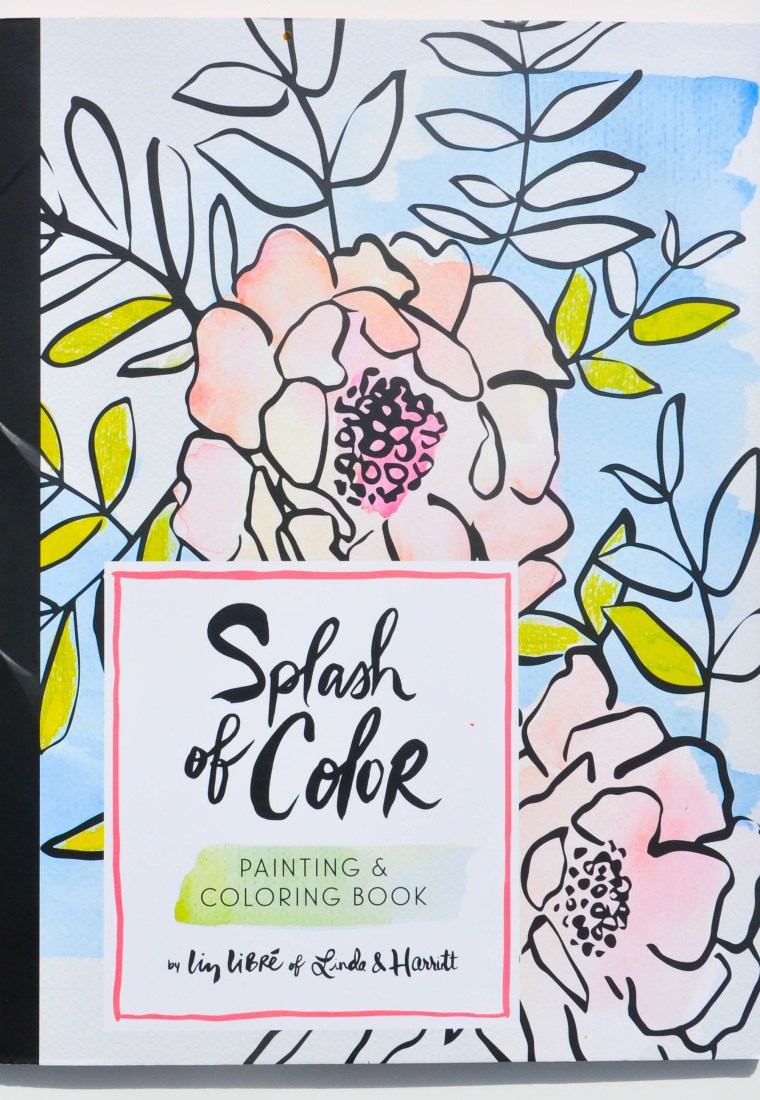 Splash of Color: A Painting and Coloring Book the Whole Family Will Love