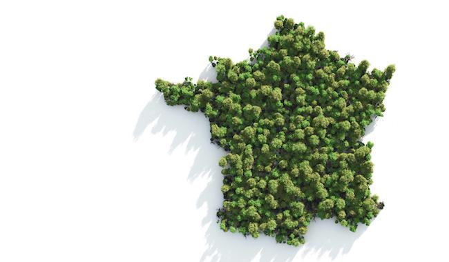Carte France verte