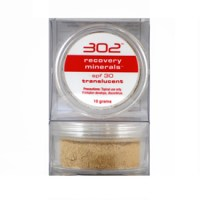 302 Recovery Minerals