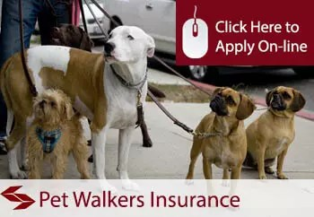 pet walkers public liability insurance