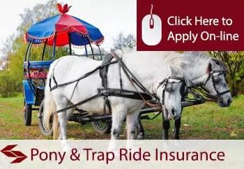 pony and trap ride operator public liability insurance