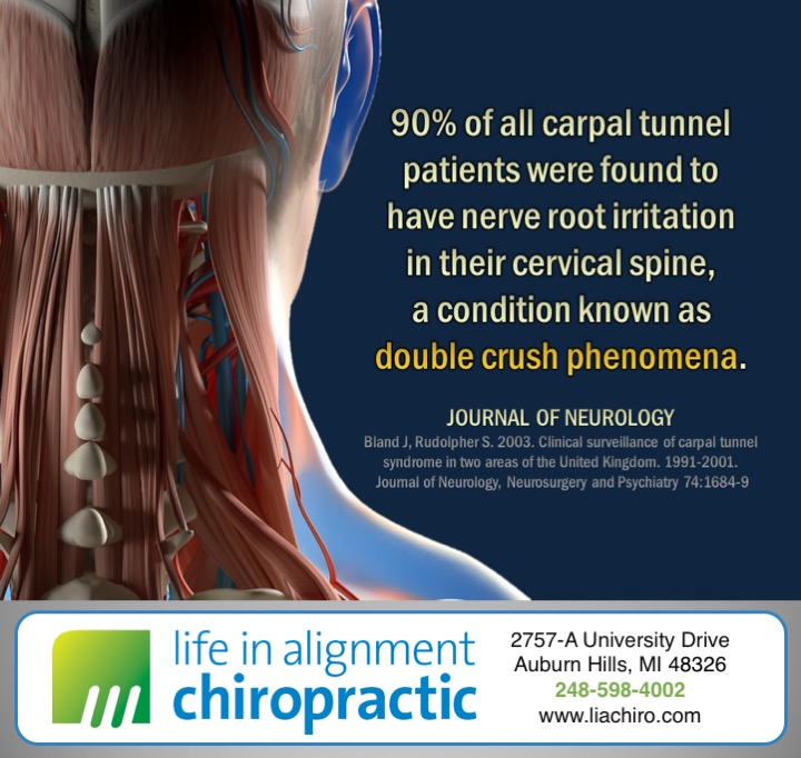 Quote from Journal of Neurology on Carpal Tunnel Syndrome