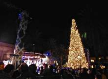 Fashion Island Tree Lighting 8