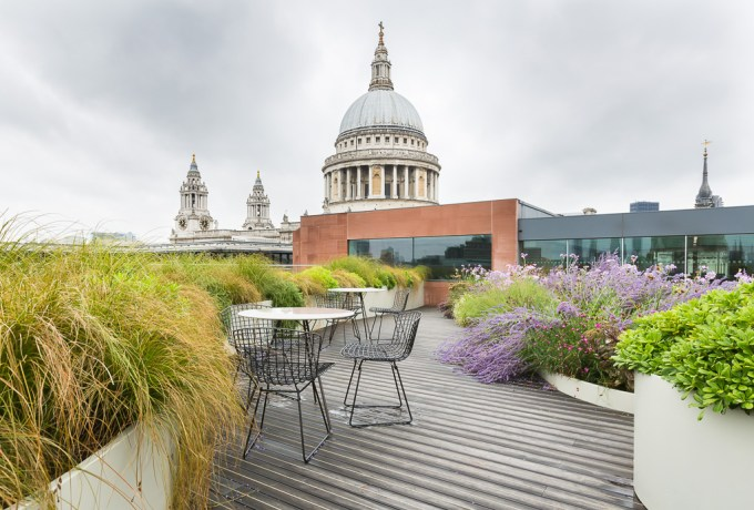 Roof top garden overlooking St Pauls Cathedral