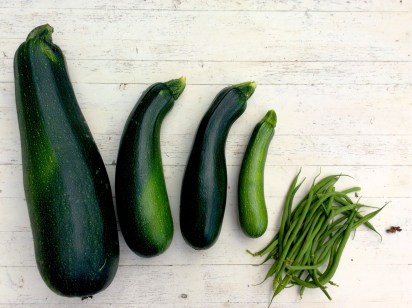 courgettes-2