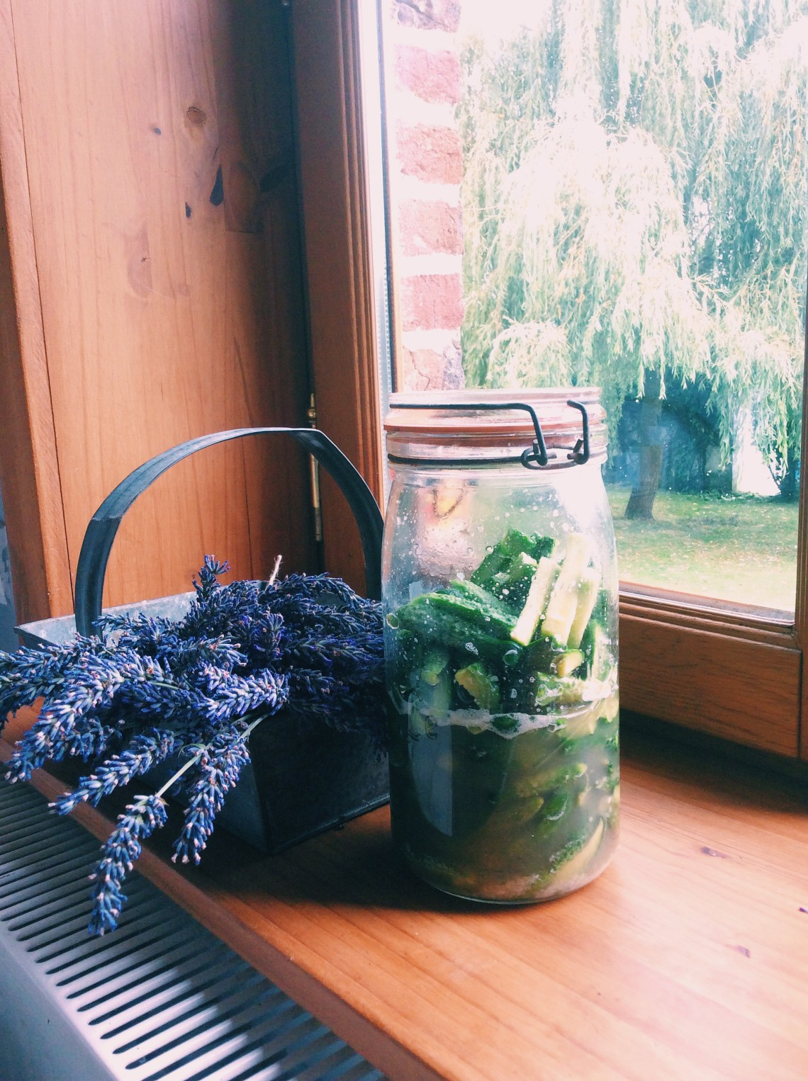 蔬菜在我的罐子裡-家常酸黃瓜CORNICHON DE MAISON