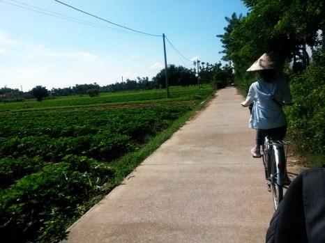 Hoi an free bike tour kim bong vilage