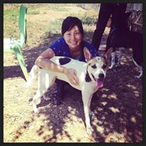 Volunteering at Care for Dogs in Chiang Mai, Thailand