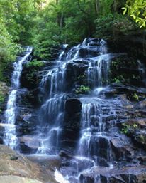 Valley of the Waters Track near Wentworth Falls