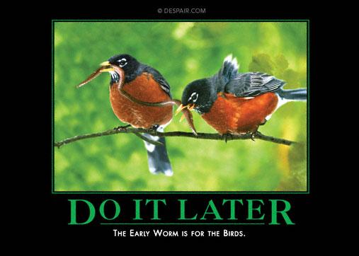 Do it Later Demotivator