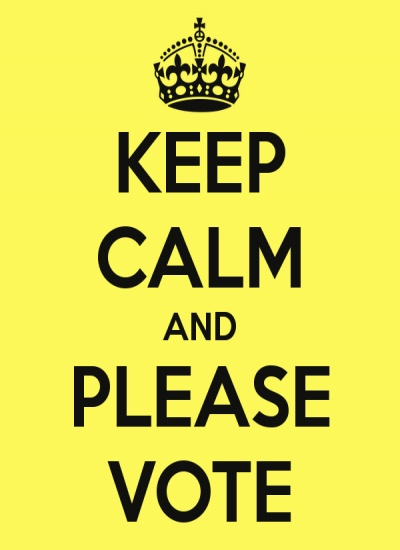 Image result for please vote