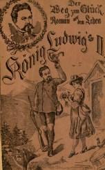 Der Weg zum Glueck Roman aus dem Leben - pamphlet cover