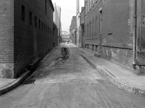 Cardigan Alley