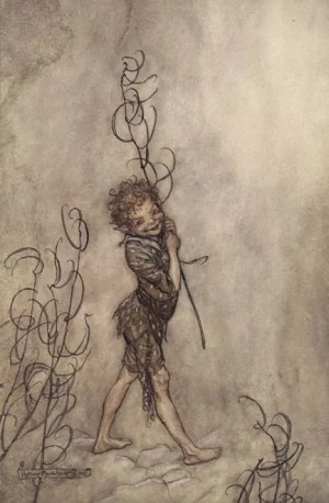 Illustration by Arthur Rackham, What Fools these Mortals Be
