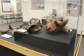 Big Bone Lick Exhibit