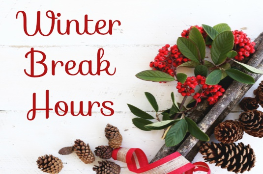 Winter Break Hours image