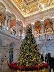 Christmas tree in the Library of Congress