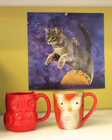 Owl mugs and cat poster.