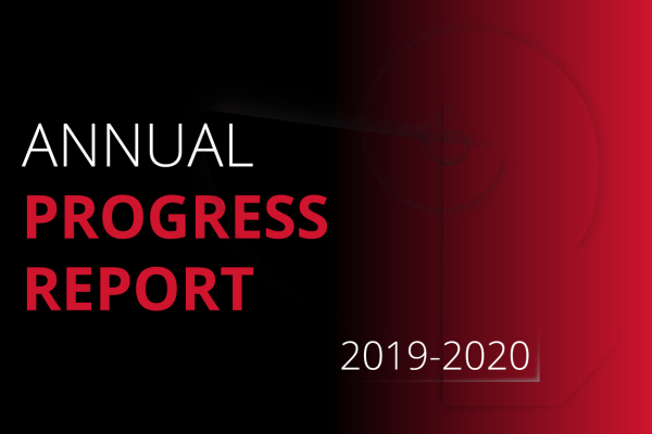 annual progress report graphic