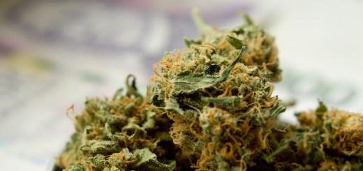 Illinois cannabis banking
